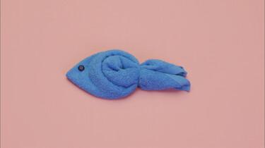 Herken jij het zwemmende handdoekdier?