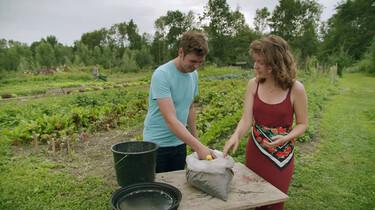 Hoe maak je plantenmest van mensenpoep?: Composteren kun je leren