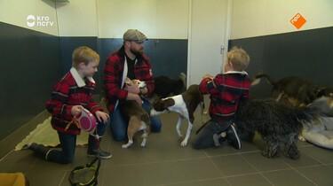 Beestenbrigade: Hondenhotel