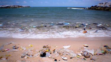 Hoe komen we af van het plastic in de zee?