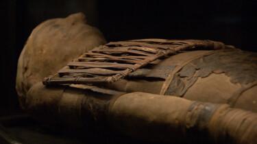 Drie ingewikkelde vragen over mummies