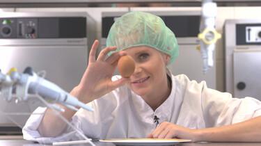Het Klokhuis: Eierfabriek