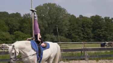 Hoe maak je een koprol op een paard?