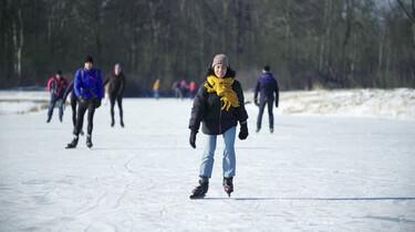 Waar moet je op letten als je gaat schaatsen op natuurijs?: Tips om dieren in natuurgebieden te helpen