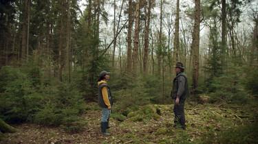 Waarom is een divers bos belangrijk?: Een gevarieerd bos voor meer biodiversiteit