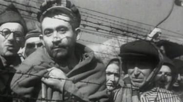 Wat gebeurde er in Auschwitz en andere kampen?: De hel op aarde