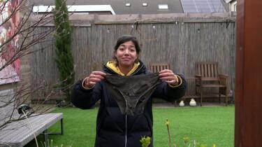 Hoe weet je of de bodem in je tuin gezond is?