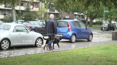 Wat doet een blind persoon als zijn hond poept?