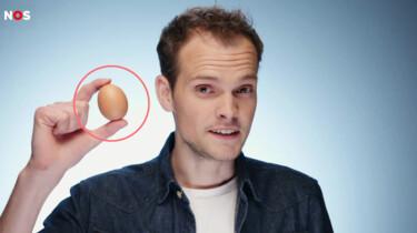 De harde wereld achter jouw ei