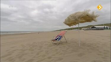 Nieuws uit de natuur: Strand en duin