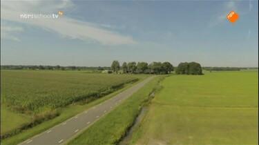 Nieuws uit de natuur: Vliegkunstenaars