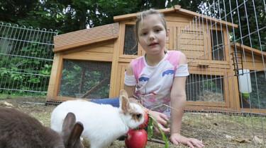 Een pop voor konijn