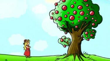 Een boom vol toverballen