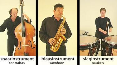 Soorten muziekinstrumenten
