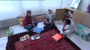 Stichting Vluchtelingenwerk Nederland