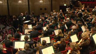 Het symfonieorkest