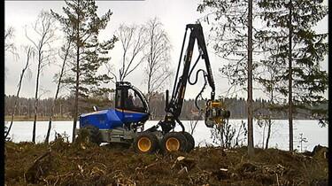 De bosbouwmachine