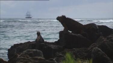De Galapagoseilanden
