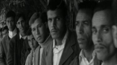 Nieuwkomers naast autochtonen