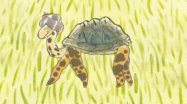 Spin en schildpad