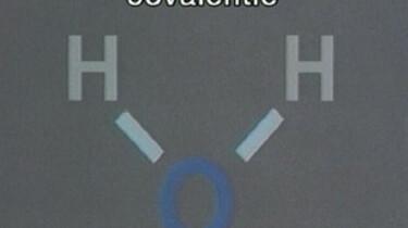 Covalentie