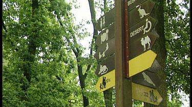 De weg in de dierentuin