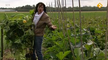 Nieuws uit de natuur: De eetbare tuin