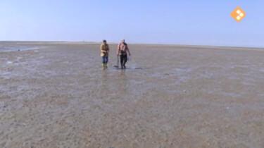 Nieuws uit de natuur: Watervervuiling