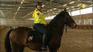 Het Klokhuis: Politiepaard (2)