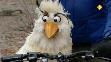 Huisje Boompje Beestje: De fiets