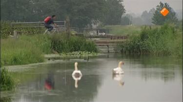 GeoClips: Hoog en laag Nederland