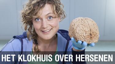 Het Klokhuis: Hersenen