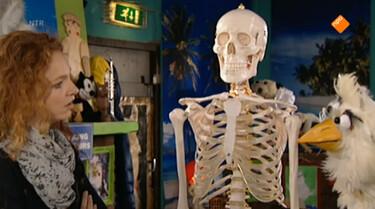 Huisje Boompje Beestje: Het skelet