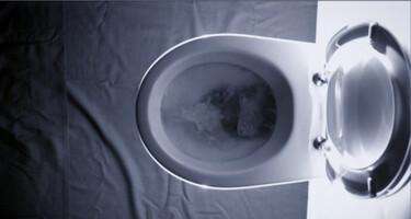 De Kennis van Nu in de klas: Ziek van toilet