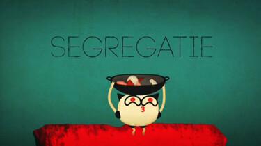 Hoe werkt segregatie?