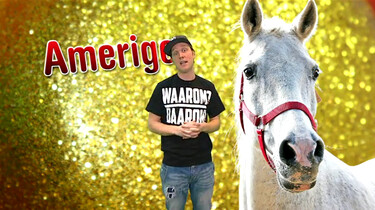 Waarom is het paard van Sinterklaas wit?
