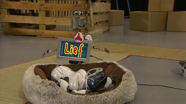Wat kun je met een robothond?