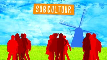 Dominante cultuur en subculturen