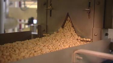 Hoe worden borrelnootjes gemaakt?