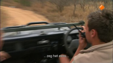 Freeks wilde wereld: Leeuwen en boomslang