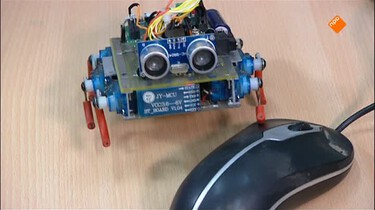 Het Klokhuis: Kleine robots