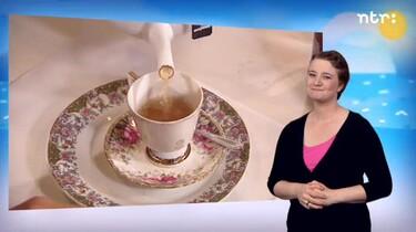 Huisje boompje beestje met gebarentolk: Huisje boompje beestje: op de thee