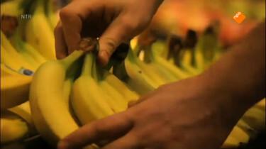 Het Klokhuis: Banaan