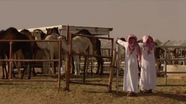 3 op Reis in de klas: Saoedi-Arabië