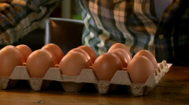 Keuringsdienst van Waarde in de klas: Eieren