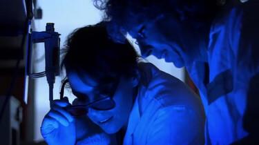 De Kennis van Nu in de klas: DNA onderzoek met smoking gun