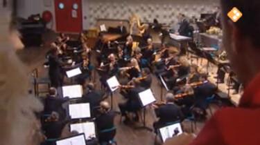 Huisje Boompje Beestje: Het orkest