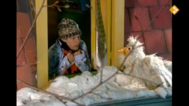 Huisje Boompje Beestje: Het sneeuwt!