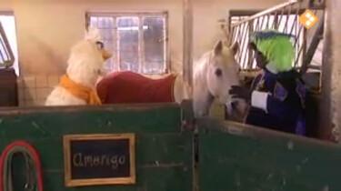 Huisje Boompje Beestje: Het paard van Sinterklaas