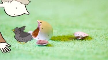 1 minuutje natuur: Een kuiken verzorgen